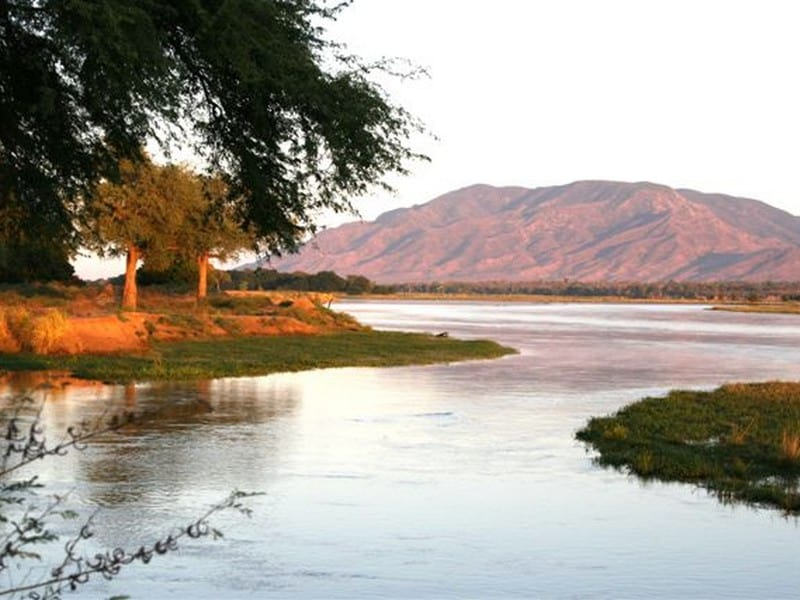 Goliath Safaris Tented Camp