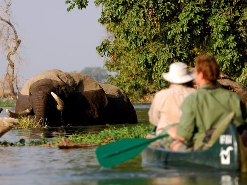 Natureways Safaris Tented Camp